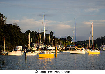 Opua marina at the Bay of Islands New Zealand - OPUA, NZ -...