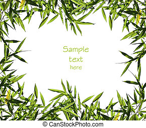 bamboo leaf background - fine image of bamboo leaf...