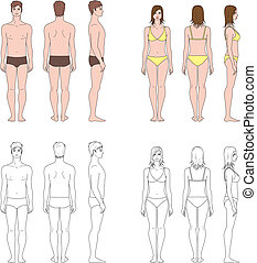 Human figure - Vector illustration Set of male and female...