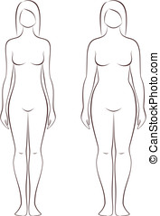 Woman figure - Vector illustration of female figure....
