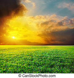 dramatic sunset over green grass field