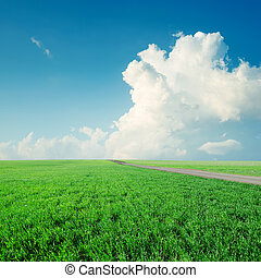 clouds in blue sky over green grass