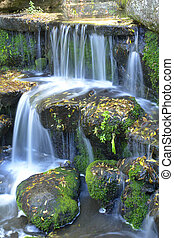 waterfall and leaves on stones...