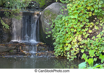 waterfall and leaves on stones