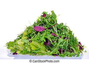 Salad mix with rucola, frisee, radicchio and lettuce
