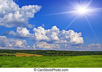 Sunny summer landscape - Summer landscape with blue sky,...