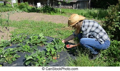 girl pick strawberry - Farmer gardener girl woman with hat...