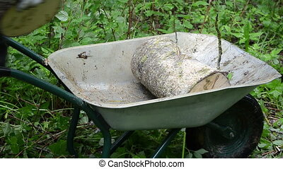 hand firewood barrow - Hands load firewood birch wood logs...