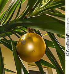 Golden christmas bomb hanging from yucca plant