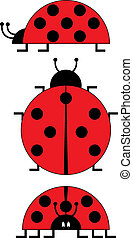 Ladybird vector isolated on white background