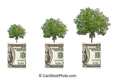 árvores, crescendo, dólar, conta