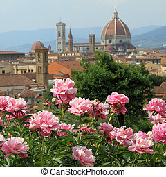 flowering pink peony with fantastic view of cathedral of...