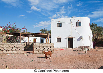 house in Dahab - White house in the back streets of Dahab in...