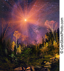 Galaxy and fall - Transcarpathian wild forests warm autumn...
