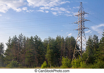 power line in nature