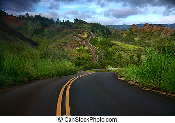 Artistic Curved Road on the Island of Kauai - Curved Road on...