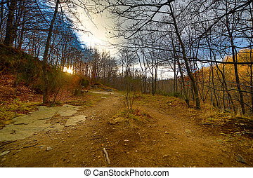 Santa Fe del Montseny - Winter day in the natural park of...