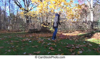 woman rake leaves tree - young women raking with a big rake...