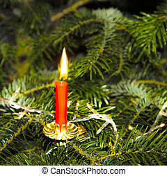 burning candle at the green christmas tree - burninmg candle...