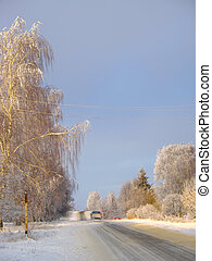 Country road in winter with sunshine on trees