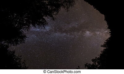 milky way moving across the night sky on the forest