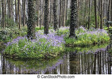 XiXi Wetland - The XiXi wetland in Hangzhou, Zhejiang...