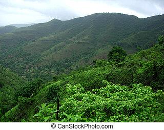 Monsoon landscape-II - A beautiful monsoon landscape with...