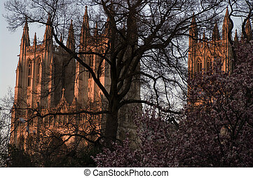 National Cathedral - View of the National Cathedral in...