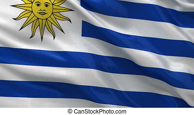Flag of Uruguay seamless loop - Flag of Uruguay waving in...