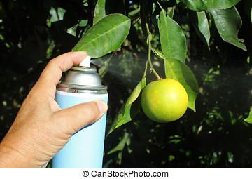 spraying pesticide - close-up of hand holding spray...