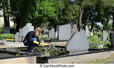 husband grave plant - wife plant begonia flowers on husband...