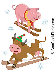 Skier pig cow - Pig and cow on the skies Vector illustration...