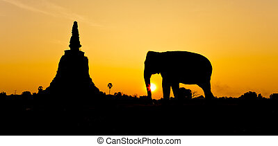 Pagoda and elephants in Ayutthaya,Thailand