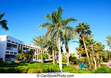 Building and recreation area of the luxury hotel, Sharm el...
