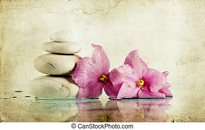 Vintage photo of spa stones and pink flower - Vintage photo...