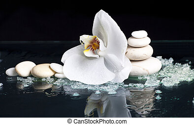 Spa stones with orchid flower on black background - Spa...