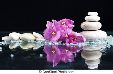 Spa stones and pink flower on black background - Spa stones...