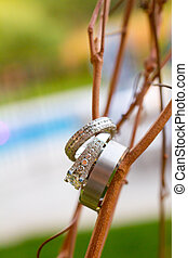 Wedding Rings Macro - Wedding rings in detail shot with a...