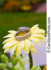 Wedding Rings Macro - Wedding rings in detail shot with a...