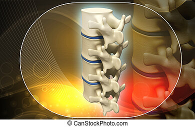 human spine - Digital illustration of human spine in colour...