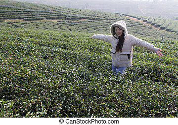 Portrait Thai woman in tea plantati