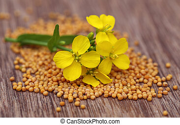 Mustard flower with seeds on wooden surface