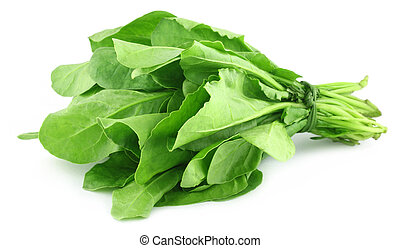 Spinach bundle - Close upl of bundle of fresh spinach over...