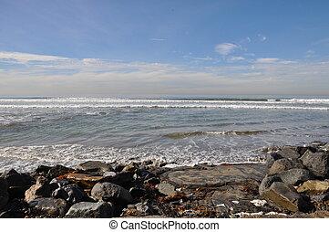 Torrey, Pinos, estado, playa