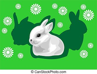 Rabbit and shadow - The white rabbit on a green background...