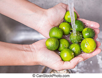 Washing Calamondin Fruit - Female hands washing calamondin...