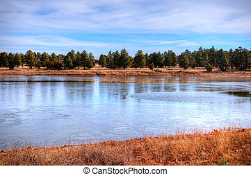 Winter Lake - Arizona lake and forest in the winter