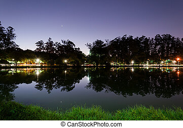 Reflection of trees in Ibirapuera Park - Reflection of trees...