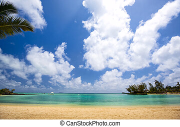 Tropical lagoon - Beautiful sand beach in Mauritius Island