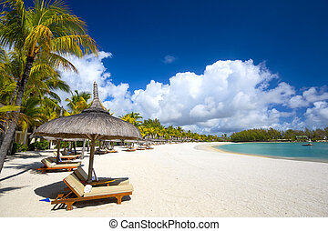 Sand tropical beach - White sand beach with lounge chairs...